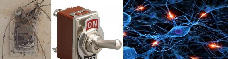 03-interruptores-y-celulas-con-luz