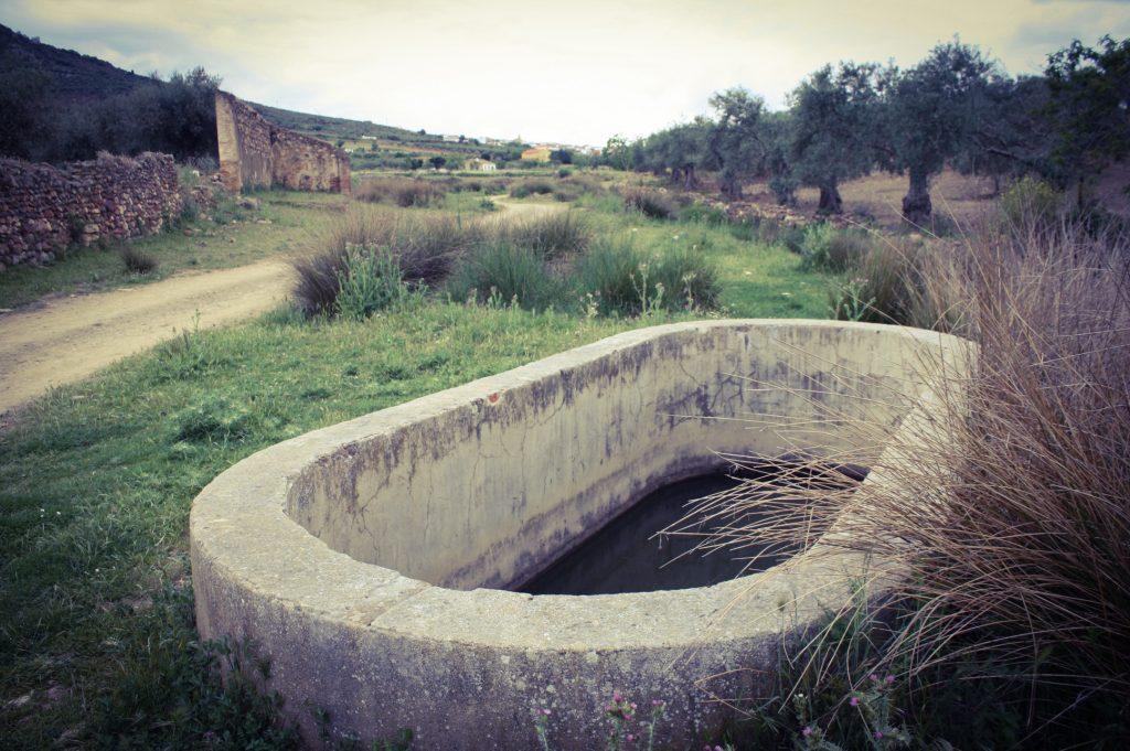 La fuente de la Velasca (A. Briz)