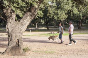 Una pareja pasea a su perro por una dehesa.