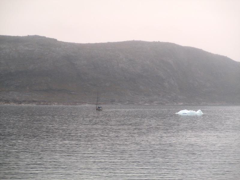 comparacioón velero hielo