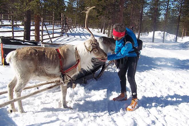 Corredor en la Laponia Finlandesa