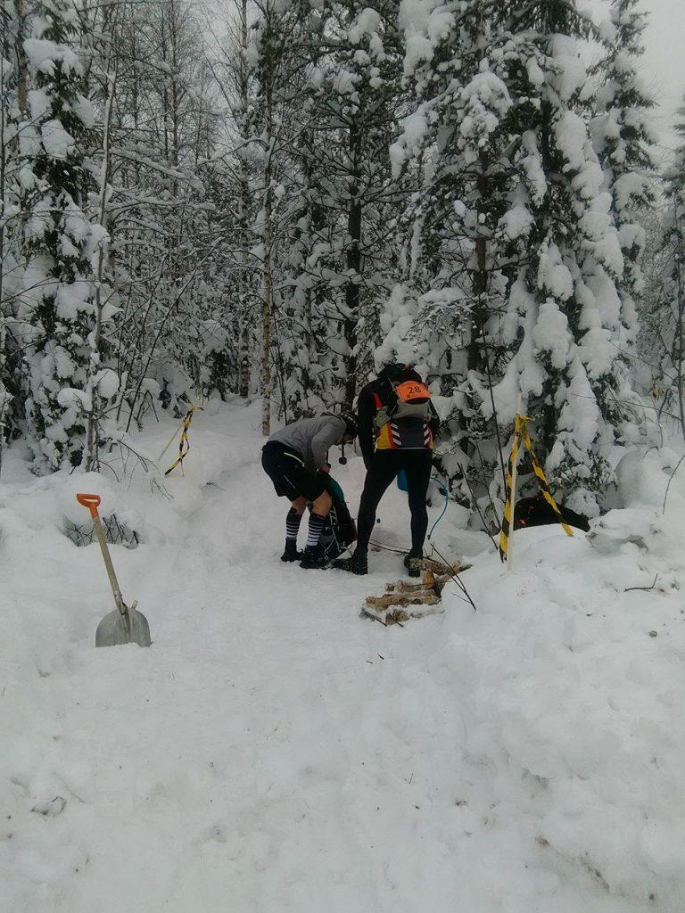Entrada en el laberíntico bosque boreal finlandés