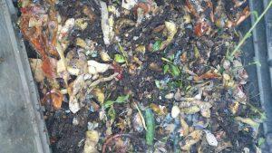 compost-casero-1