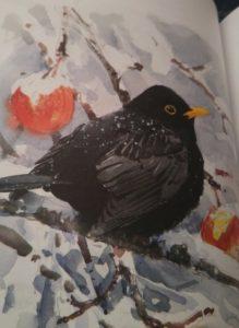 Lars Jonsson (Winter Birds, editorial Bloomsbury).