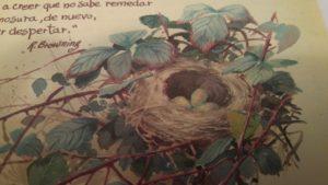 Edith Holden (La felicidad de vivir con la naturaleza, editorial Blume).