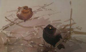 Lars Jonsson (Birds and light. The art of Lars Jonsson, editorial Helm).